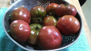 Cherokee Purple tomatoes from the Museum Garden