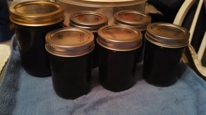 Blueberry jam, with tops waiting to pop after processing.