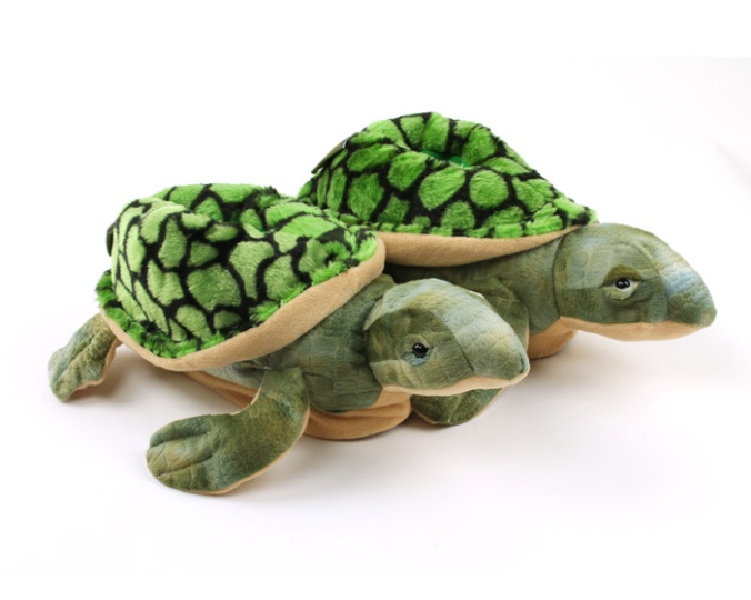 turtle-slippers-1-xl